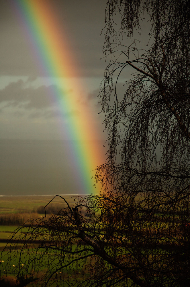Porlock Rainbow, Dan Hall